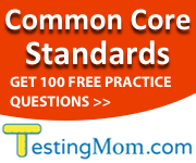Common Core Standards Practice Test